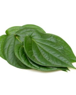 Betel Leaf / Pan Patta