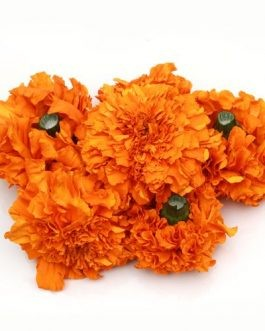 Marigold – Orange