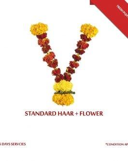 Standard GARLAND (HAAR) + Flower