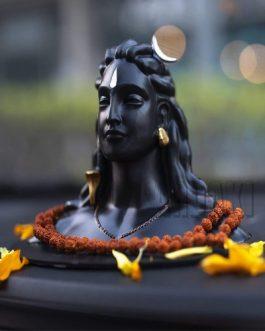 Adiyogi Shiva Statue idol